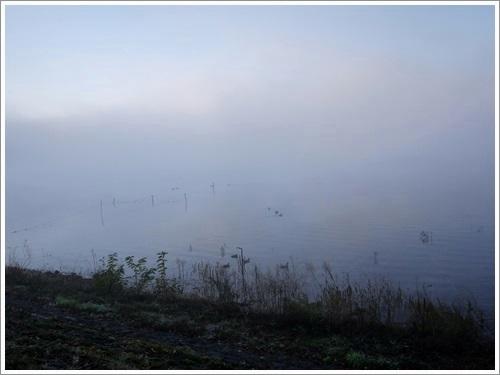 河口湖紅葉祭り26