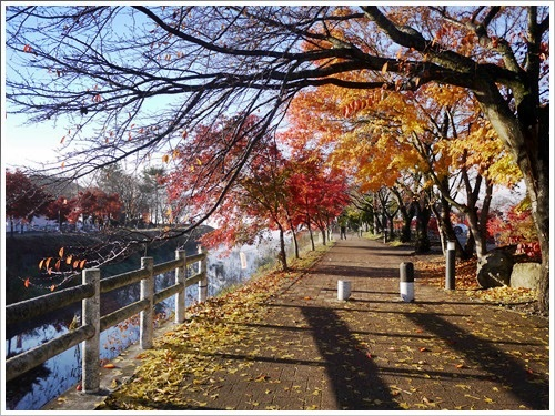 河口湖紅葉祭り43