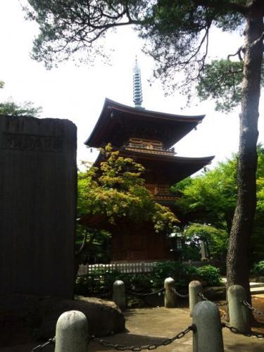 豪徳寺(三重塔)、