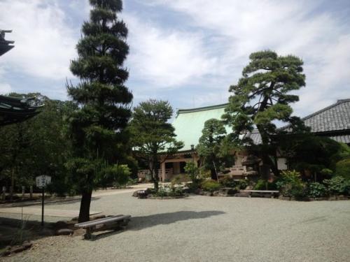 豪徳寺(本堂が)