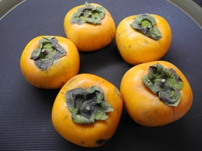 20131115山形のさわし柿