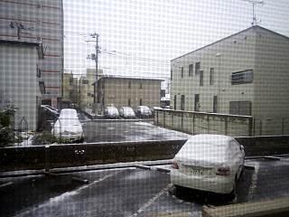 20130421雪の朝(その1)
