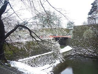 20130421鶴ヶ城(その5)