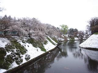20130421鶴ヶ城(その10)