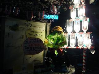 20130627夜桜(その1)
