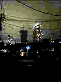 20130627夜桜(その35)
