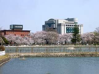 開成山公園・大神宮の桜(その44)