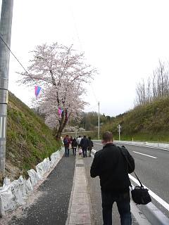 20130420三春滝桜(その22)