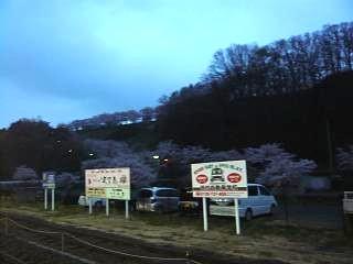 20130420三春滝桜(その43)