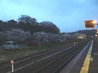 20130420三春滝桜(その44)
