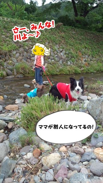 ブルーベリーと川遊び2