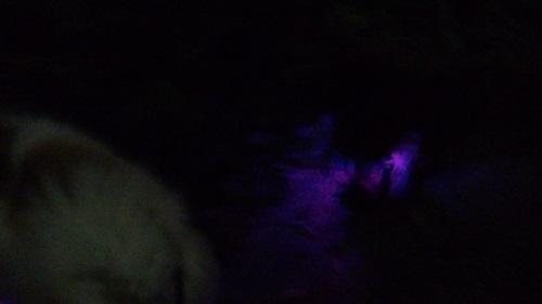 暗闇の必需品3