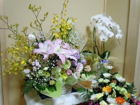 七七忌3(2013-11-03)