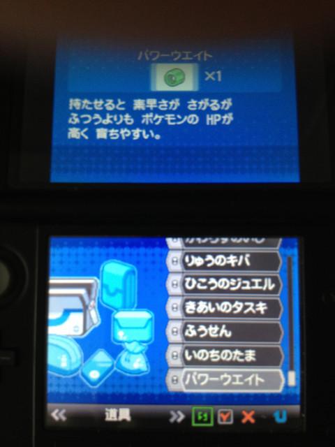 ポケモンゲーム画面130824-2