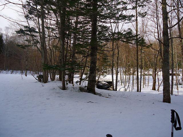 林道から尾根に取りつき目印