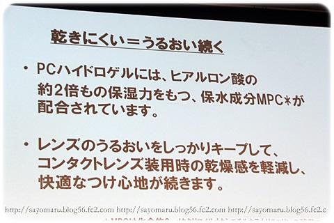 sayomaru7-400.jpg