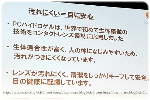 sayomaru7-401.jpg