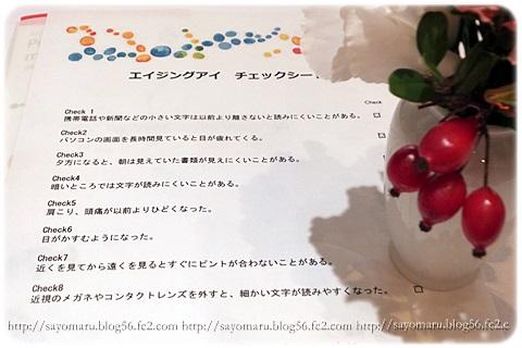 sayomaru7-402.jpg