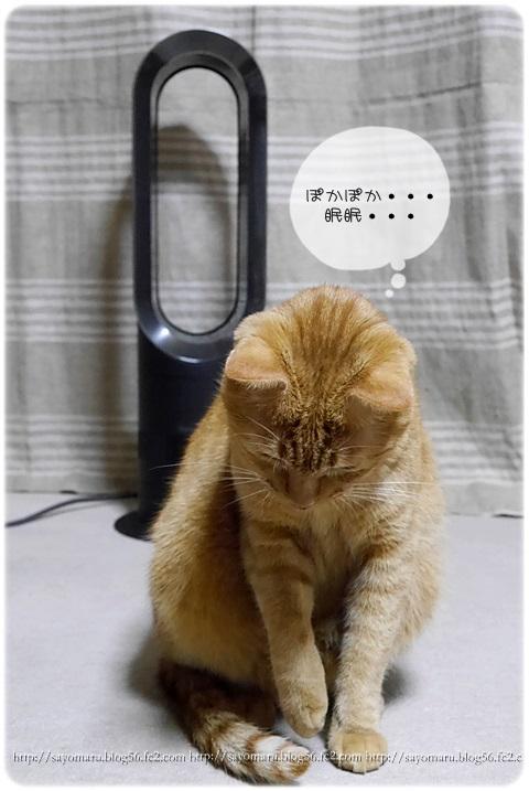 sayomaru7-555.jpg