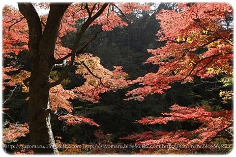 sayomaru7-621.jpg