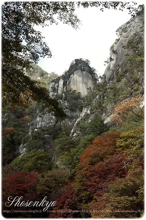 sayomaru7-625.jpg