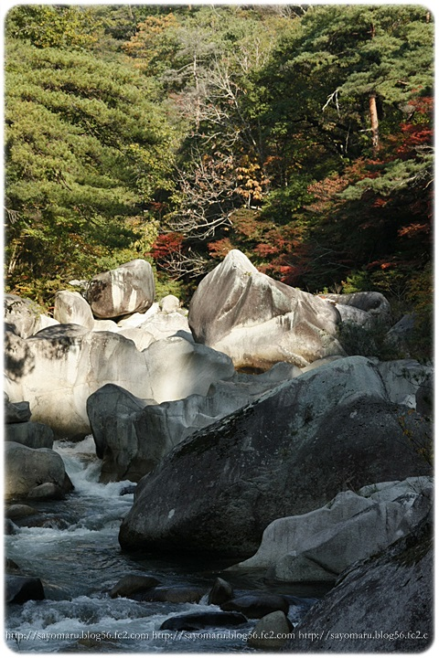sayomaru7-678.jpg