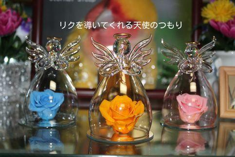 お花の天使たち