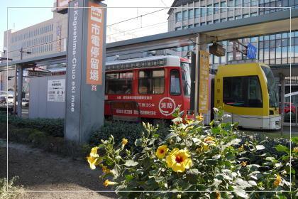 130924kagoshimacity7.jpg