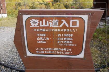 131006tsugaike_oike1.jpg