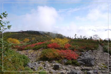 131006tsugaike_oike5.jpg