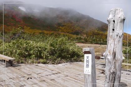 131006tsugaike_oike6.jpg