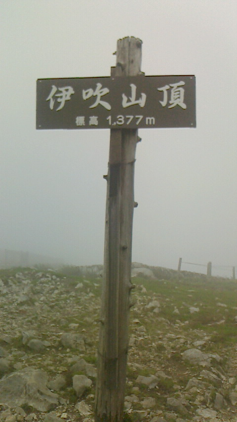 NEC_2112_伊吹山101