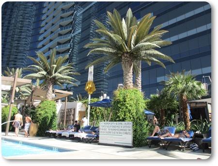 コスモポリタンのプール,ラスベガスのホテルのプール,コスモポリタンプール画像