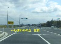 菜の花2013三本木3道順