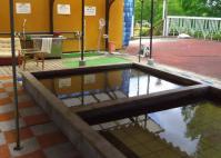 秋保森林スポーツ公園14森林の湯ペット温泉