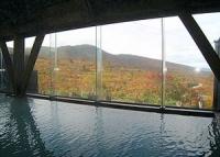 須川温泉栗駒山荘8内風呂