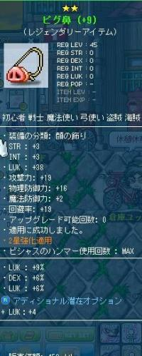 Maple130524_211516.jpg