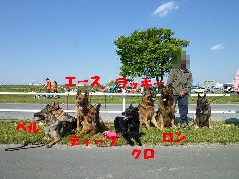 P1020206.jpg