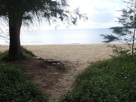 とりあえず砂浜へ