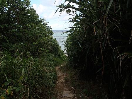 中野海岸へ