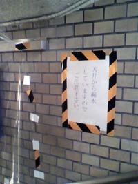 20101125_SHINBASHI_01s.jpg