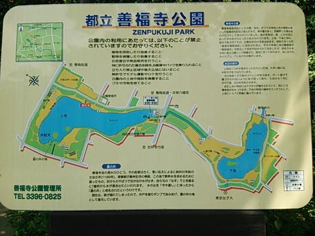 善福寺公園-map