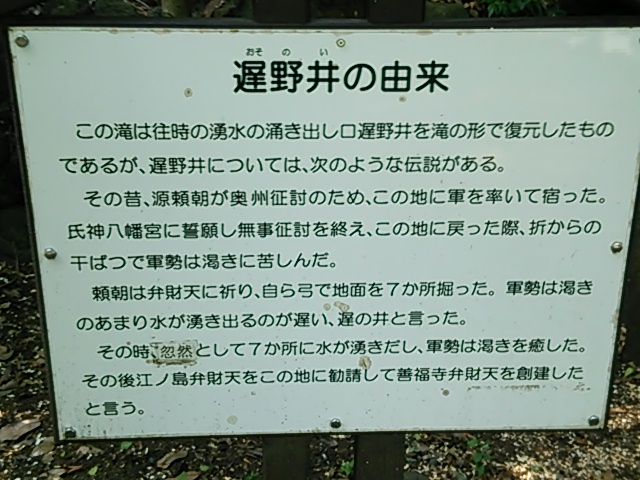 善福寺公園5
