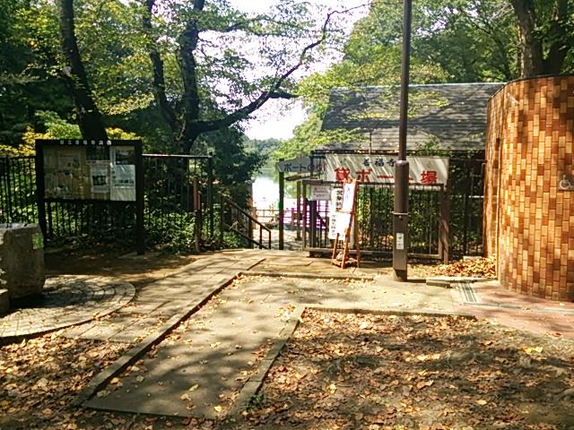 善福寺公園 貸ボート