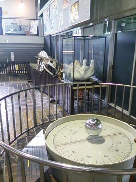 杉並区立科学館-展示-1F-3