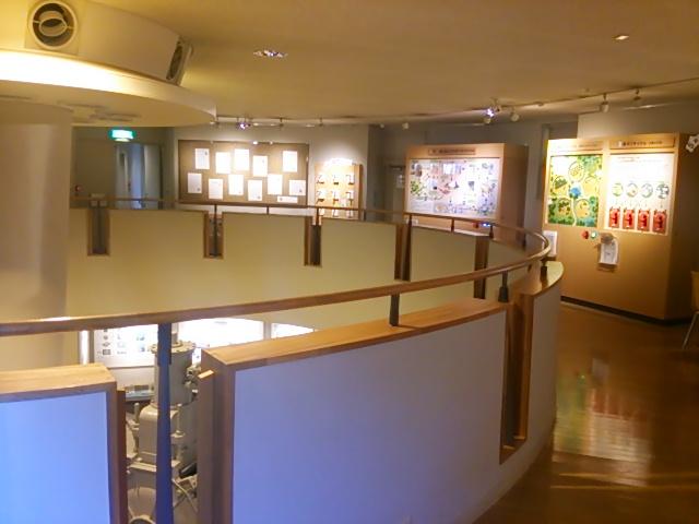 紙の博物館11