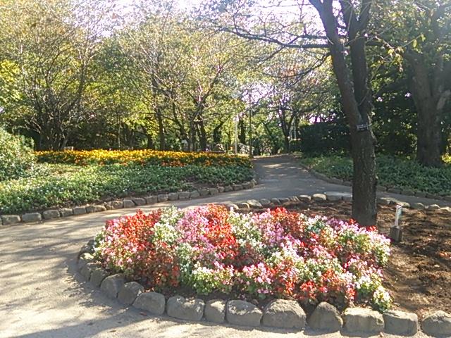 飛鳥山公園04