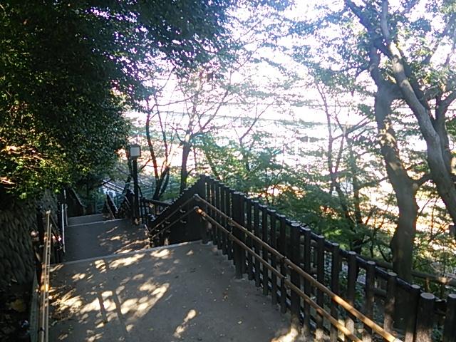 飛鳥山公園13