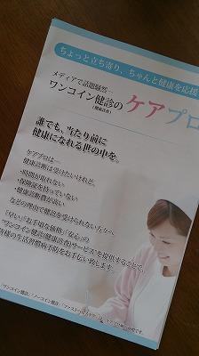 DSC_0354.jpg