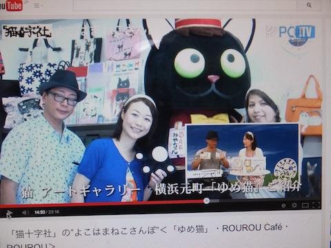 ゆめ猫紹介みゃちゃんとDSCF7032 のコピー